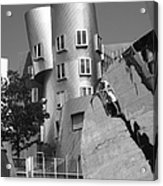 Massachusetts Institute Of Technology Stata Center Acrylic Print by University Icons