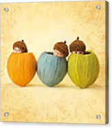 Maya And Ruby And Justin Acrylic Print by Anne Geddes