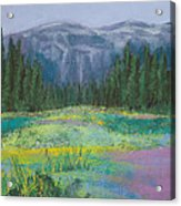 Meadow In The Cascades Acrylic Print by David Patterson