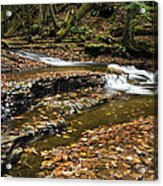 Meandering Waters Acrylic Print by Christina Rollo