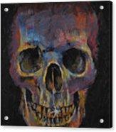 Skull Acrylic Print by Michael Creese