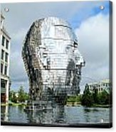 Metalmorphosis Side Context Acrylic Print by Randall Weidner