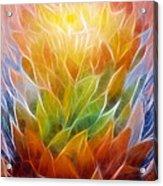 Metamorphosis Acrylic Print by Ann Croon