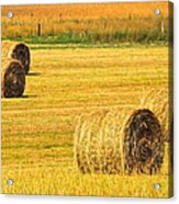 Midwest Farming Acrylic Print by Frozen in Time Fine Art Photography