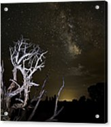 Milky Way Over Arches National Park Acrylic Print by Adam Romanowicz