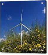 Miniature Wind Turbine In Nature Acrylic Print by Bernard Jaubert