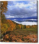 Misty Day In The Cairngorms II Acrylic Print by Louise Heusinkveld