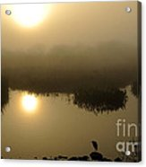 Misty Morning In The Marsh Acrylic Print by Nancy Greenland