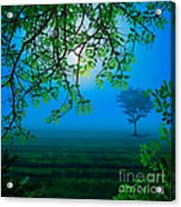 Misty Night Acrylic Print by Bedros Awak
