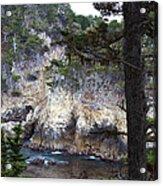 Monterey Rock Pines And Cypress Acrylic Print by Viktor Savchenko