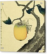 Moon Persimmon And Grasshopper Acrylic Print by Katsushika Hokusai