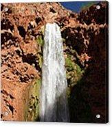 Mooney Falls Grand Canyon Acrylic Print by Michael J Bauer