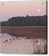Moonrise Over Waterfowl Pond Acrylic Print by John Burk