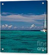 Moorea Lagoon No 16 Acrylic Print by David Smith