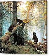 Morning In A Pine Forest Acrylic Print by Ivan Shishkin