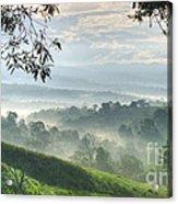 Morning Mist Acrylic Print by Heiko Koehrer-Wagner