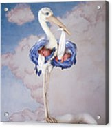 Mother Stork Acrylic Print by Anne Geddes