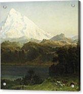 Mount Hood In Oregon Acrylic Print by Albert Bierstadt