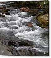 Mountain Stream Acrylic Print by Skip Willits