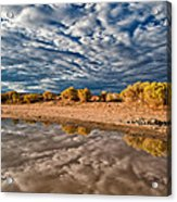 Mud Puddle Acrylic Print by Cat Connor