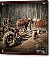 Mud Season - With Border Acrylic Print by Joy Nichols