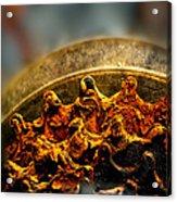 Muddy Rusty Sprockets Acrylic Print by Bob Orsillo