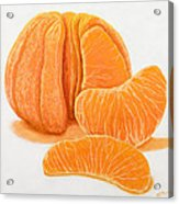 My Clementine Acrylic Print by Garry McMichael
