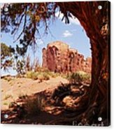 Natural Wood Frame Acrylic Print by Mel Steinhauer