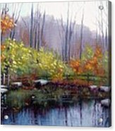 Nature Center Pond At Warner Park In Autumn Acrylic Print by Janet King