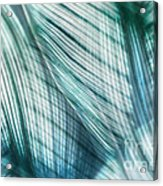 Nature Leaves Abstract In Turquoise And Jade Acrylic Print by Natalie Kinnear