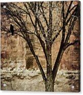New Mexico Winter Acrylic Print by Carol Leigh