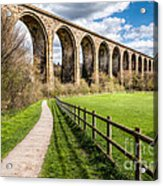 Newbridge Viaduct Acrylic Print by Adrian Evans