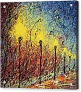 Night In The Park II Acrylic Print by Ash Hussein