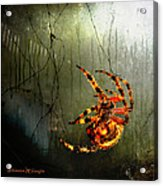 Nightmares Acrylic Print by Karen Slagle