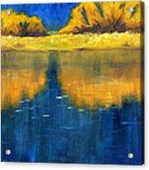 Nisqually Reflection Acrylic Print by Nancy Merkle
