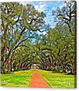 Oak Alley 3 Oil Acrylic Print by Steve Harrington