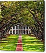 Oak Alley Acrylic Print by Steve Harrington