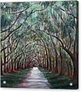 Oak Avenue Acrylic Print by Anastasiya Malakhova