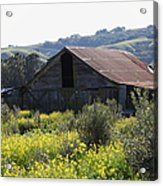 Old Barn In Sonoma California 5d22232 Acrylic Print by Wingsdomain Art and Photography