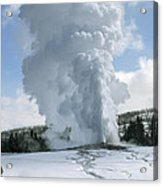 Old Faithful In Her Glory - Yellowstone Acrylic Print by Sandra Bronstein
