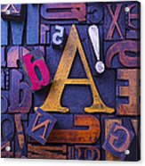 Old Typesetting Fonts Acrylic Print by Garry Gay