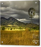 Old Windmill Acrylic Print by Robert Bales