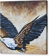 On Eagle's Wings Acrylic Print by Ilse Kleyn