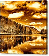 On Golden Pond Acrylic Print by David Patterson