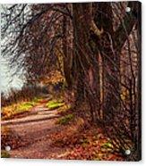 On The Bank Of River Volga Acrylic Print by Jenny Rainbow