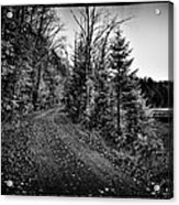 On The Way To Cary Lake Acrylic Print by David Patterson