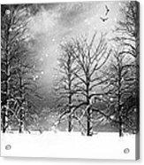 One Night In November Acrylic Print by Bob Orsillo