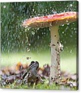 One Rainy Day Acrylic Print by Tim Gainey