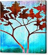Oneness Acrylic Print by Jaison Cianelli