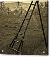 Orchard Ladder Acrylic Print by Edward Fielding
